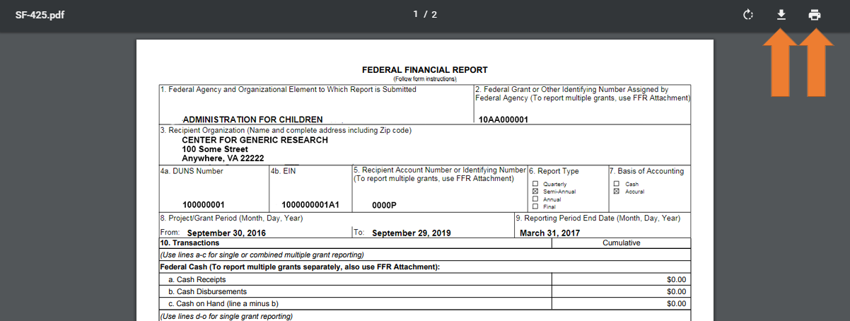 Screen of the Federal Financial Report Printer Friendly View.